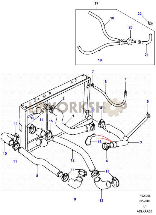 Radiator Hoses - 200tdi