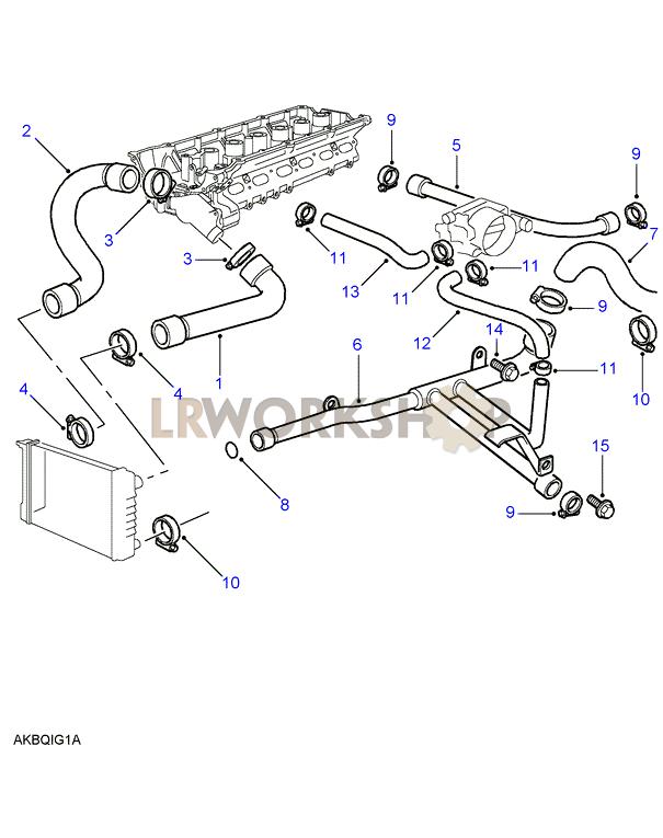 radiator hoses - bmw m52