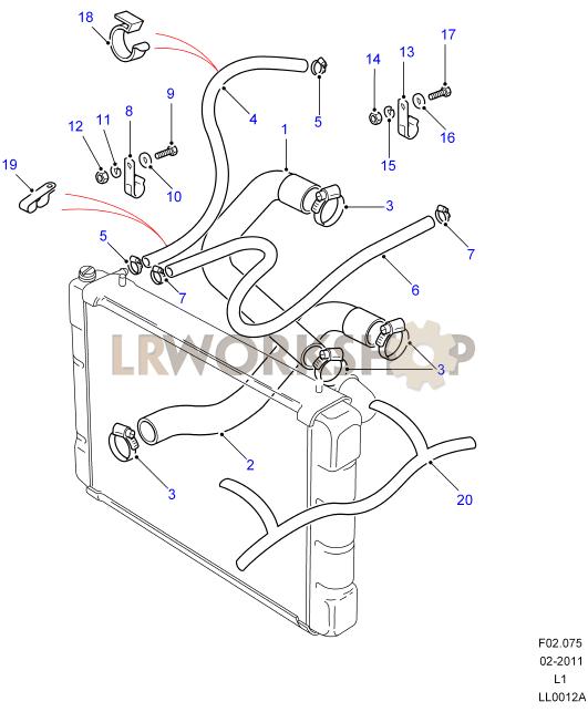 radiator hoses - v8