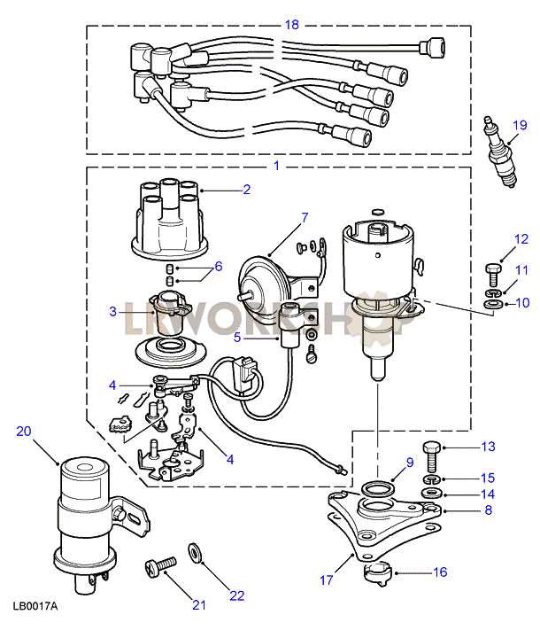 Distributor, Leads, Coil & Plugs
