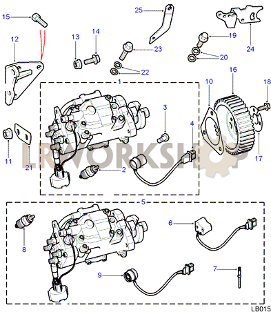 Injection Pump - 300Tdi - Find Land Rover parts at LR Workshop