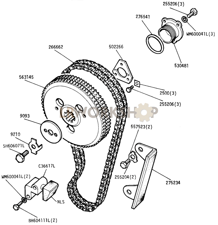 Camshaft Chain And Chainwheel