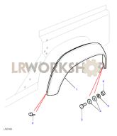 Rear Eyebrows Part Diagram