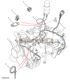2.5L Petrol Engine Harness Part Diagram