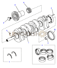 Crankshaft & Bearings Part Diagram