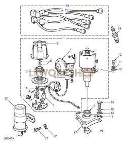 Distributor, Leads, Coil & Plugs Part Diagram