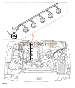 Harness Fuel Injector Part Diagram