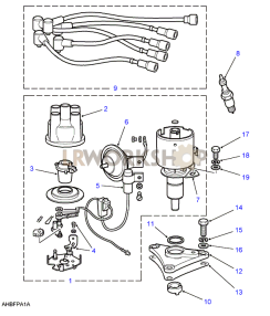 Distributor, Leads, Coil & Plugs Part Diagram