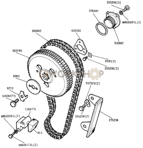 Camshaft Chain and Chainwheel Part Diagram