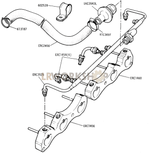 DETOXED ENGINE - Exhaust Manifold Adaptor Part Diagram