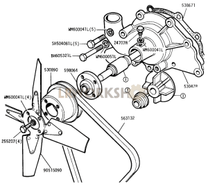 Water Pump and Fan Part Diagram