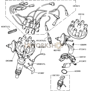 Distributor and Ignition Harness (Detoxed Engine) Part Diagram